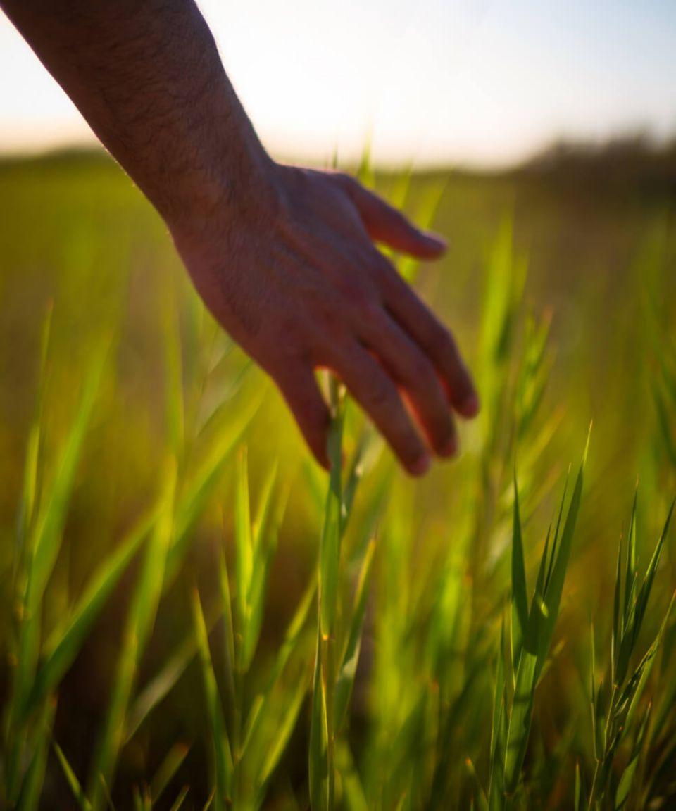 Nachhaltigkeit <br/>als Weg und Ziel